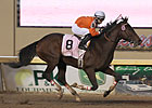 128-1 Texas Bling Lights Up Springboard Mile