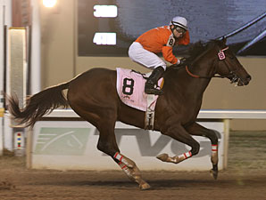 Texas Bling wins the Springboard Mile.