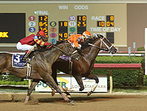 Texas Bling wins the 2015 Assault Stakes.