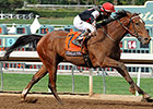 Texas Red Recovering, SA Derby Remains Goal