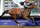 Texas Red Set for Super Return in San Vicente
