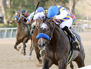 The Factor All Set for Arkansas Derby