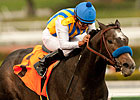 The Factor Returns to Work Tab at Del Mar