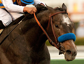 Baffert Targets Sunland Derby for The Factor