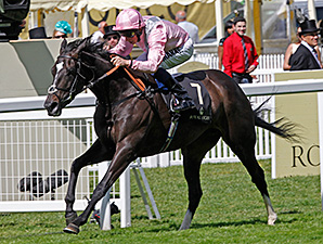 The Fugue Favorite for Coral-Eclipse