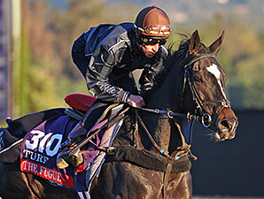 Multiple Group I Winner The Fugue Retired