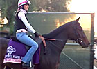 Breeders&#39; Cup - Europeans Leave the Yard