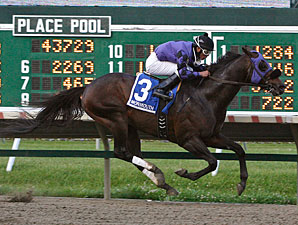 The Hunk wins the 2012 John J. Reilly Handicap.