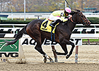 New York Stallion Series On Tap at Aqueduct