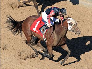 The Mallard Man wins the Arkansas Breeders Stakes.