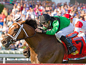 The Pizza Man wins the 2015 Opening Verse Stakes.