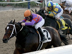 Louisiana H. Contenders Back for Mineshaft