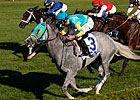 Thorn Song Wire-to-Wire in Turf Mile
