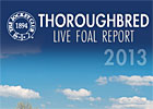 2013 Thoroughbred Live Foal Report