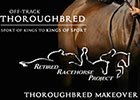 Thoroughbred Makeover is Bigger, Interactive