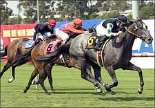 Three Degrees Prepares for American Oaks
