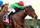 Three Hearts, Diversy Harbor Meet Again