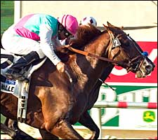Three Valleys Scales Del Mar Breeders' Cup