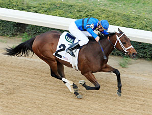Tidal Pool wins the 2011 Redbud Stakes.