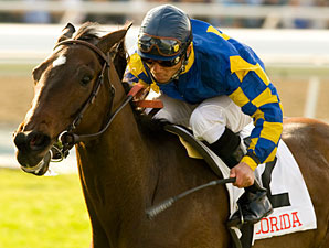 Tight Precision wins the 2010 Sunshine Millions Filly & Mare Turf.