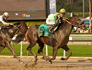 Tiz a Minister wins the 2013 California Breeders Champion Stakes - Colts and Geldings Division.
