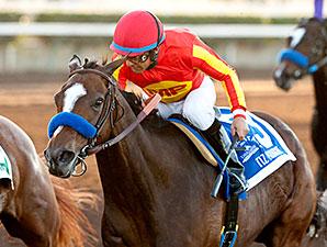 Tiz Midnight wins the 2014 Bayakoa Stakes.