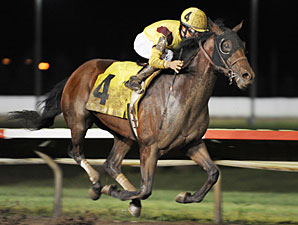 Step-Up Time for Oklahoma Derby Dozen