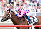 Tizdejavu Eyes Fourth Straight Turf Win