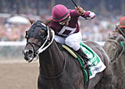 Breeders' Cup Chat: Divisional Rankings
