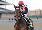 Royal Delta, To Honor and Serve Work at CD