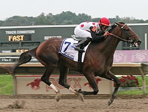To Honor and Serve wins the 2011 PA Derby.