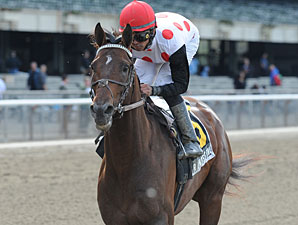 No Pushovers in Strong Metropolitan Handicap