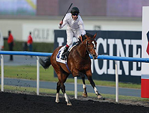 Toast Of New York wins the UAE Derby.