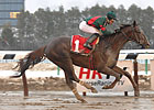 Toby&#39;s Corner Overcomes Mud to Win Whirlaway