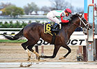Tommy Macho Pulls Away in Discovery 'Cap