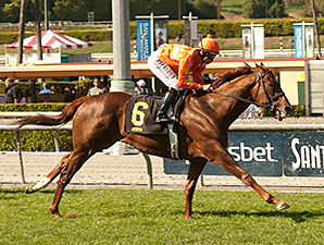 Tom's Tribute Equals Wise Dan's Course Mark