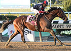 No Off Day for 3-Year-Olds Tonalist, Bayern