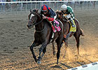 Tonalist, Wise Dan Turn in Solid Breezes