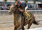 Tonalist Takes Jockey Club Gold Cup With Ease