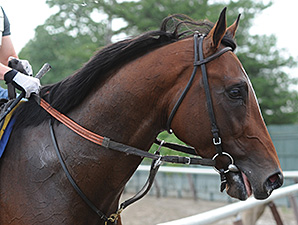 Tonalist Tunes Up for Jim Dandy at Belmont