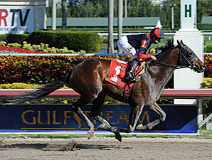 Tonalist - Maiden Win, January 18, 2014.