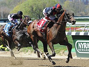 Tonalist wins the 2015 Westchester Stakes.