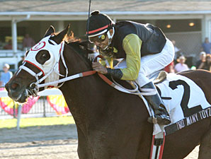Too Many Toyz wins the 2009 Carl G. Rose Classic Handicap.