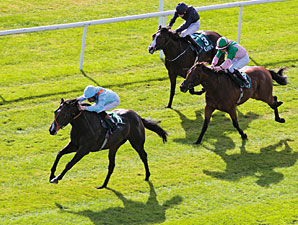 Toormore wins the 2013 Goffs Vincent O'Brien National Stakes.