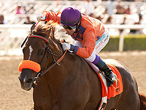 Top Fortitude wins the 2014 Lazaro Barrera Stakes.