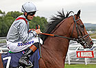 Kingman, Toronado Set for Sussex Clash