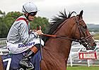 Kingman, Toronado Set for Sussex Clash