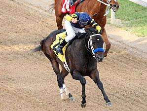 Total Bull wins the 2010 Fifth Season.
