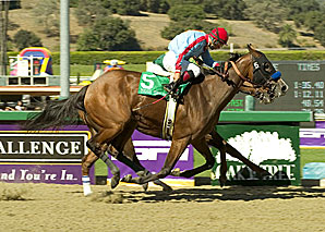 Tough Tiz's Sis Tops Santa Maria