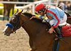 Tough Tiz's Sis Retired Due to Fracture